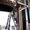 Little Giant Dark Horse Ladder